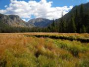 A thumb nail view of Grand Lake, Colorado during Constitution Week in September looking at the big meadow above Adams Falls on the East Inlet Trail looking at Mt. Craig in the Rocky Mountain National Park; click here to open a window with a larger picture.