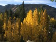 A thumb nail view of Grand Lake, Colorado during Constitution Week in September looking at aspen trees changing color in town with the Shadow Mountain in the background; click here to open a window with a larger picture.